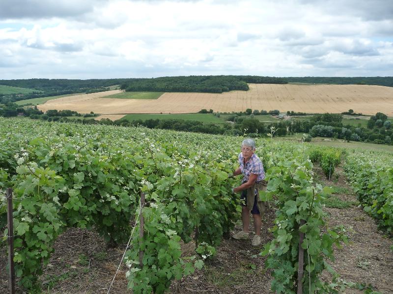 140614-120km-en-champagne-28