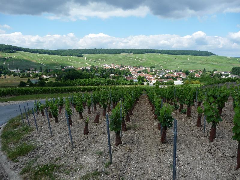 140614-120km-en-champagne-31